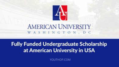 Photo of AMERICAN UNIVERSITY EMERGING GLOBAL LEADER SCHOLARSHIP