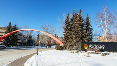 Photo of University Of Calgary Silver Anniversary Recruitment Graduate Fellowship for International students, Alberta Canada 2021